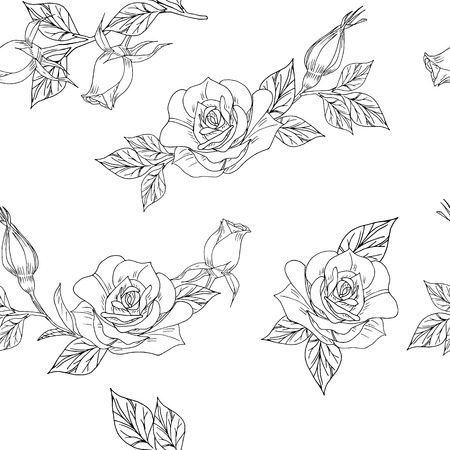 seamless pattern with hand drawn roses white and black lines vector illustration