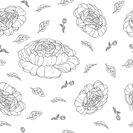 seamless pattern with hand drawn peonies black and white lines vector illustration
