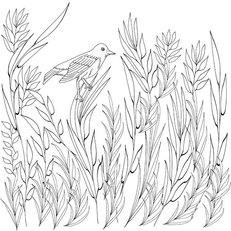 Hand drawn nature with various leaves and grass and bird black and white vector illustration for coloring