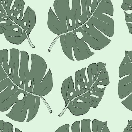 Seamless pattern with hand drawn tropical monstera leaves vector illustration