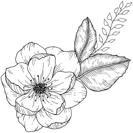 Hand drawn floral bouquet with wild rose flower and leaves monochrome vector illustration