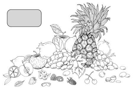 Hand drawn fruits and berries, apples, lemons, strawberries, pineapple, raspberries, cherry, pomegranate vector illustration Ilustração