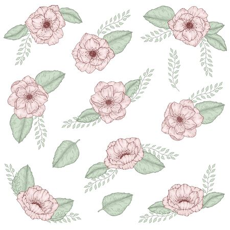 Set of hand drawn flower wild rose with leaves bouquet for templates greeting wedding invitation cards vector illustration, collection of floral bouquets on white background 向量圖像