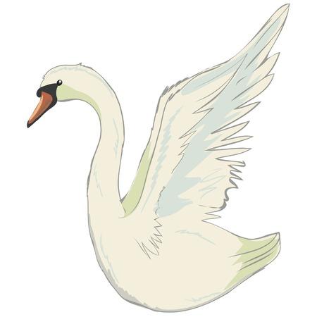 Lovely princess swan Çizim