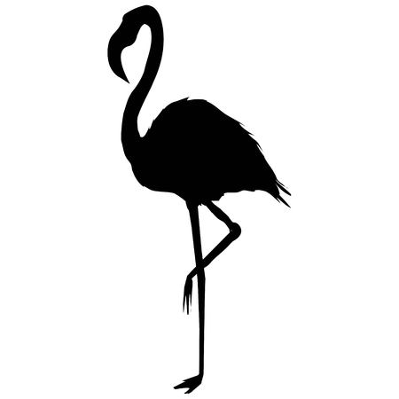 Flamingo silhouet Stock Illustratie