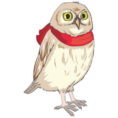 Owl sketch Imagens - 88888097