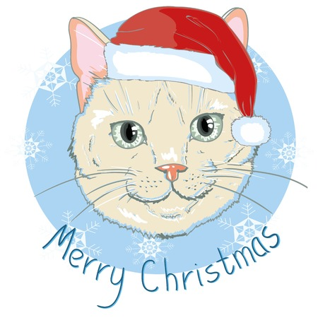 Christmas card. Cute kitten in the red Santa s cap and with striped bow. Vector illustration.