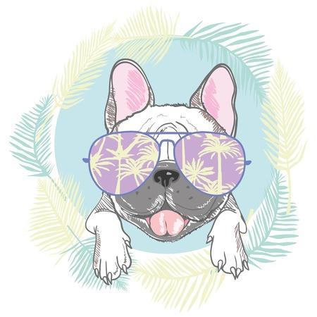 French bulldog head isolated on white background. Vector illustration Illustration