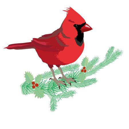 カーディナルバードコモンカーディナルデザイングラフィックノーザンカーディナルレッドカーディナルスタイル野鳥赤鳥動物アートグラフィック