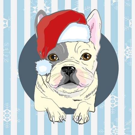 Tarjeta de felicitación de Navidad. Perro Pug con sombrero rojo de Santa. Perro, navidad, santa, sombrero, bulldog, feliz, mascota, cara, animal, fondo, raza canina, caricatura, celebración, claus
