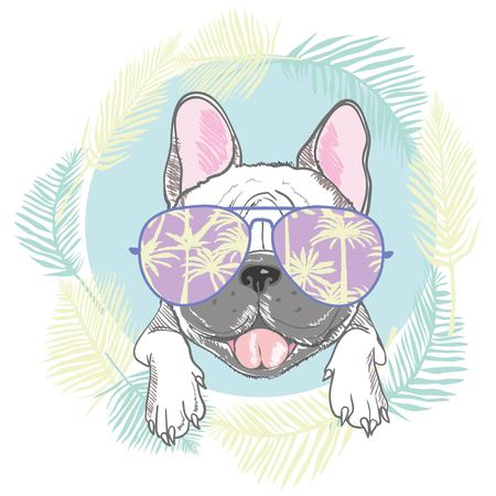 French bulldog head isolated on white background. Vector illustration Ilustração