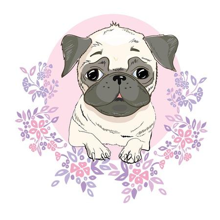 Mops Hund Gesicht - Vektor-Illustration isoliert auf weißem Hintergrund Standard-Bild - 90791099