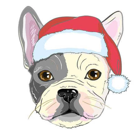 Christmas greeting card. Pug dog with red Santa s hat., bulldog, merry, pet, face, animal, background, breed, canine, cartoon, celebration claus design funny holiday illustration new portrait puppy red