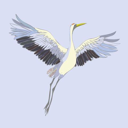 Ensemble de vecteur aquarelle de grue d'oiseaux illustrations. Cigogne blanche. objet isolé Banque d'images - 91961672