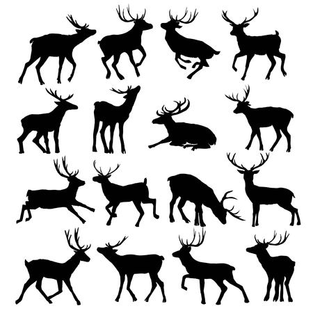 Deer silhouette isolated on white background. Vector, animal, deer, mammal, silhouette, vector, beautiful forest illustration isolated black and white elk horns