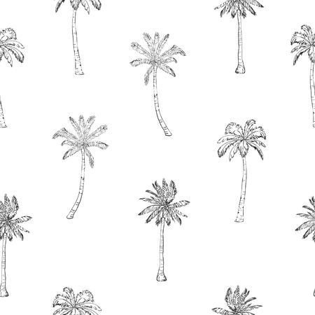 Seamless tropical palms pattern. Summer endless hand drawn vector background of palm trees can be used for wallpaper, wrapping paper, textile printing.Vector illlustration. foliage, natural, tropic, aloha, banana, botanical, eco, green, liana, miami, ornate, painting paper 일러스트