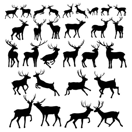 Deer silhouette isolated on white background. Vector, animal, deer, mammal, silhouette, vector, beautiful forest illustration isolated blackandwhite elk horns Stock Illustration - 93069205