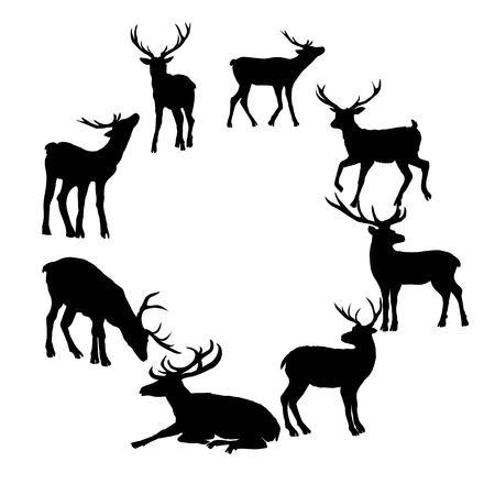 Hertensilhouet op witte achtergrond wordt geïsoleerd die. Vector, dier, herten, zoogdier, silhouet, vector, mooie bosillustratie geïsoleerde zwart-witte elandenhoornen