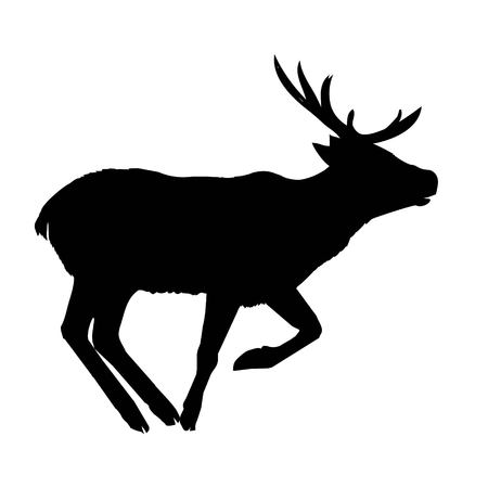 Decoration, elegance, horned, object, shadow, buck, doe, big, vintage, cervus, cute, dappled, engraving, graceful, hoofed, mature, muzzle, powerful.