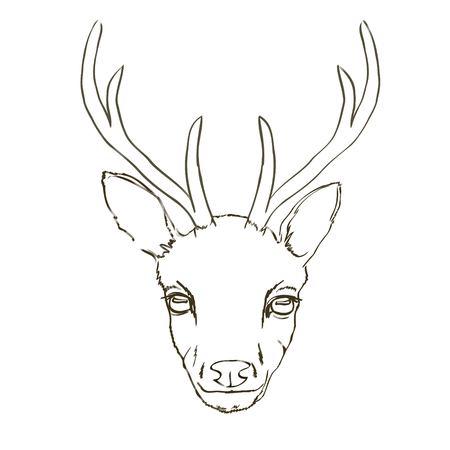 Croquis de cerf, animal, vecteur, illustration, Banque d'images - 94568127