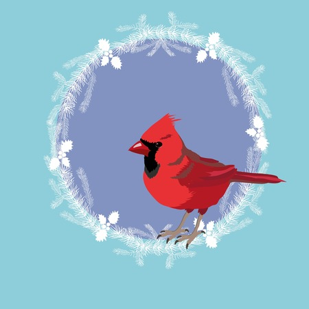 Northern Cardinal, vector, illustration, wildlife, redbird, animal, fauna, nature, songbird, wild, bird, cardinalbird commoncardinal design graphic northerncardinal redcardinal style wildbird red birds animals art graphics song bright cardinalis