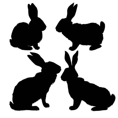 Silhouette of a sitting up rabbit, vector illustration Ilustração