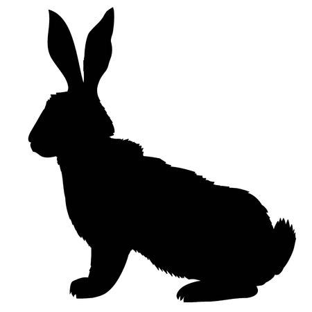 Silhouette of a sitting up rabbit, vector illustration 写真素材