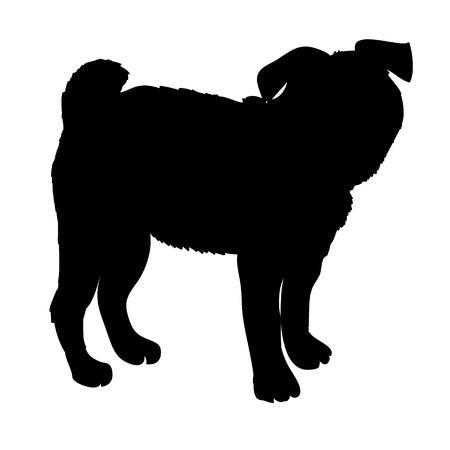 Cane di razza del bulldog francese che sta nella vista laterale - vector la siluetta isolata Archivio Fotografico - 94878675
