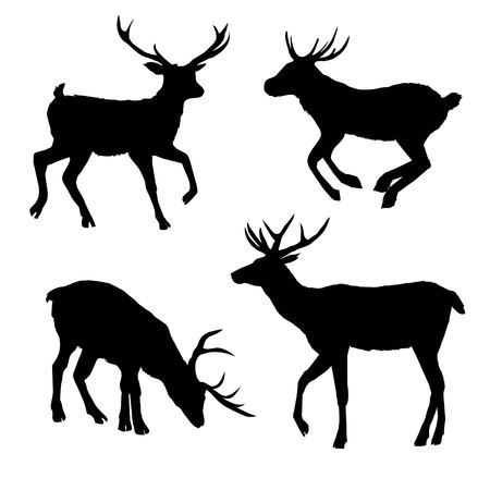 deer, silhouette vector head forest illustration, decoration, elegance, horned, object, shadow, buck doe big vintage cervus cute dappled engraving graceful