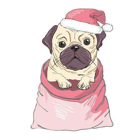 Portrait of cute french bulldog in red christmas hat on blue background. Stock Photo