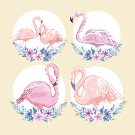 Pink flamingo vector illustration set Illustration