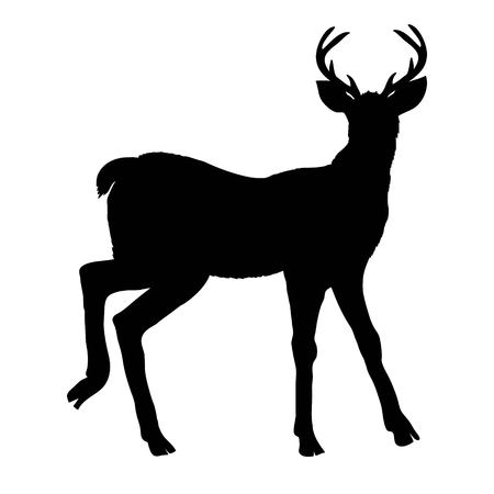 deer silhouette, vector, illustration Stok Fotoğraf