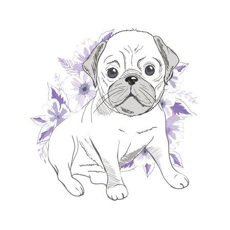 Puppy Pug , dog ,bulldog cute . Vector illustration. Stock Photo
