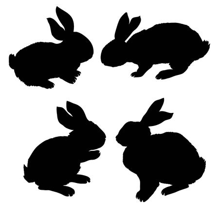 Silhouette rabbit, vector illustration Stock Illustration - 99213762