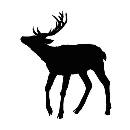 deer silhouette, vector, illustration Stock Photo
