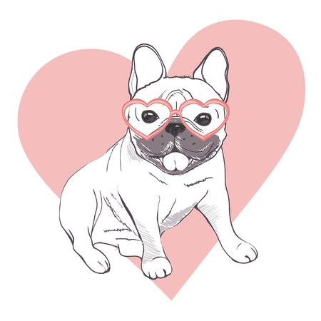 Funny puppies of french bulldog. Vector funny french bulldog, puppy cute, pet drawing sketch illustration Çizim