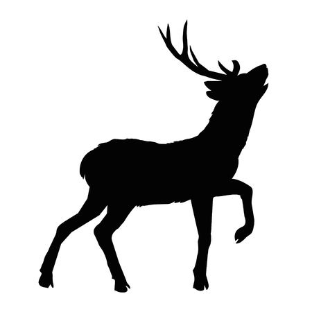 silhouette deer with great antler/animal/ vector illustration