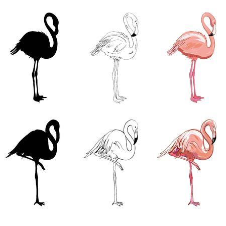 Hand drawing flamingos. Vector illustration, animal, bird isolated drawing pink Stock Illustration - 100856641