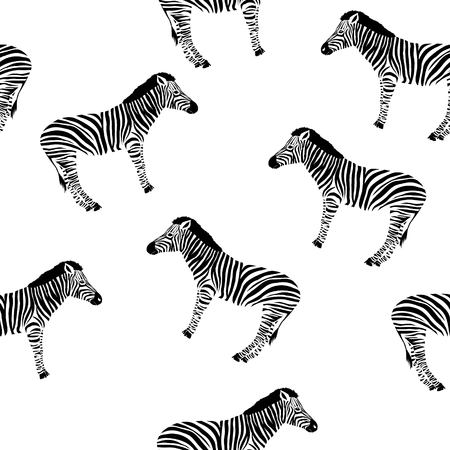 Sketch Seamless pattern with wild animal zebra print, silhouette on white background. Vector illustrations. Wild African animals. Stock Illustration - 100858357