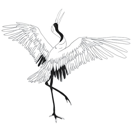Crane. A bird in flight. Design element. Vector.
