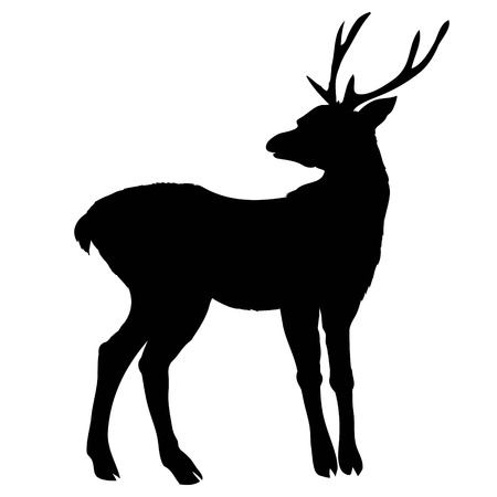 silhouette deer with great antleranimal vector illustration