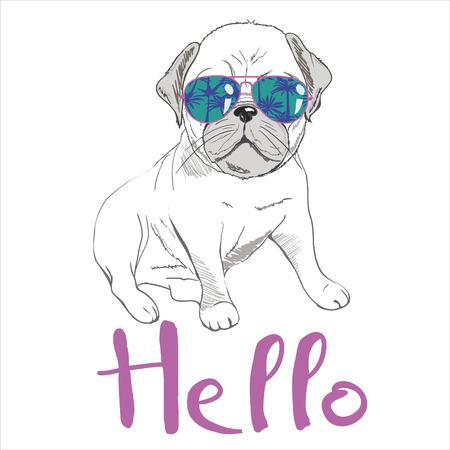 Puppy Pug , dog ,bulldog cute Vector illustration Standard-Bild - 102791480