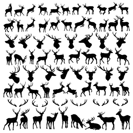 vector large collection of deer silhouettes, , animal, nature, symbol, wild black element isolated