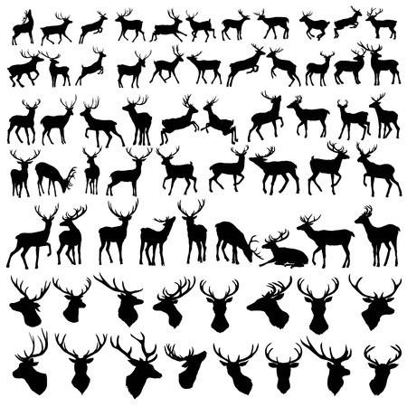 vector gran colección de siluetas de ciervos