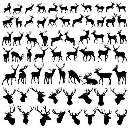 Vektor große Sammlung von Hirsch Silhouetten