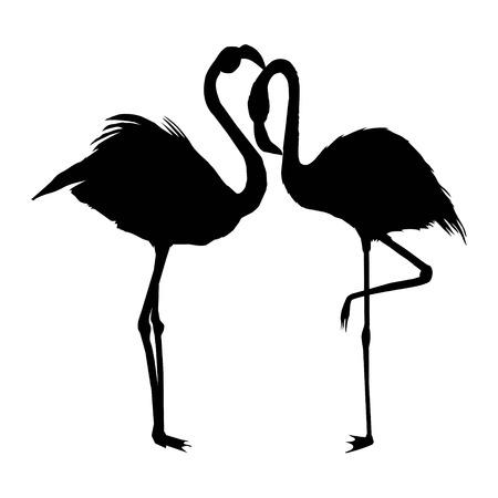 Flamingo silhouette , vector file of bird, illustration