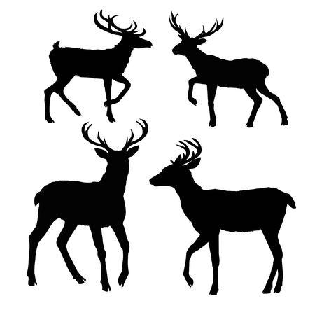 silueta de ciervo, vector, ilustración, animal, negro, naturaleza Ilustración de vector