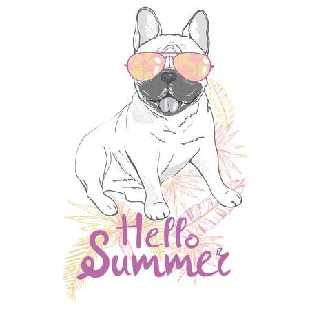 Puppy Pug , dog ,bulldog cute Vector illustration