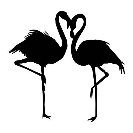 Flamingo silhouette , vector file of bird, illustration