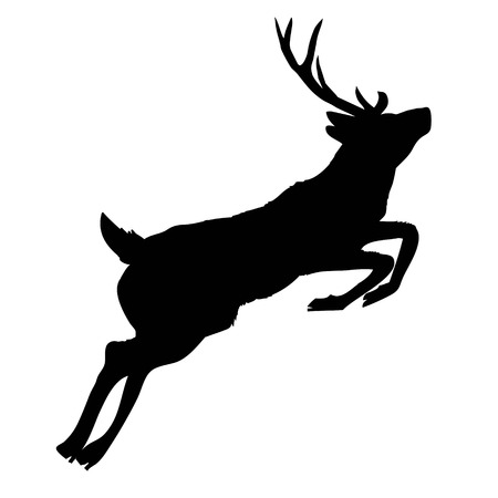 silhouette deer with great antler, animal, vector illustration